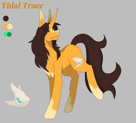 Tidal Trace