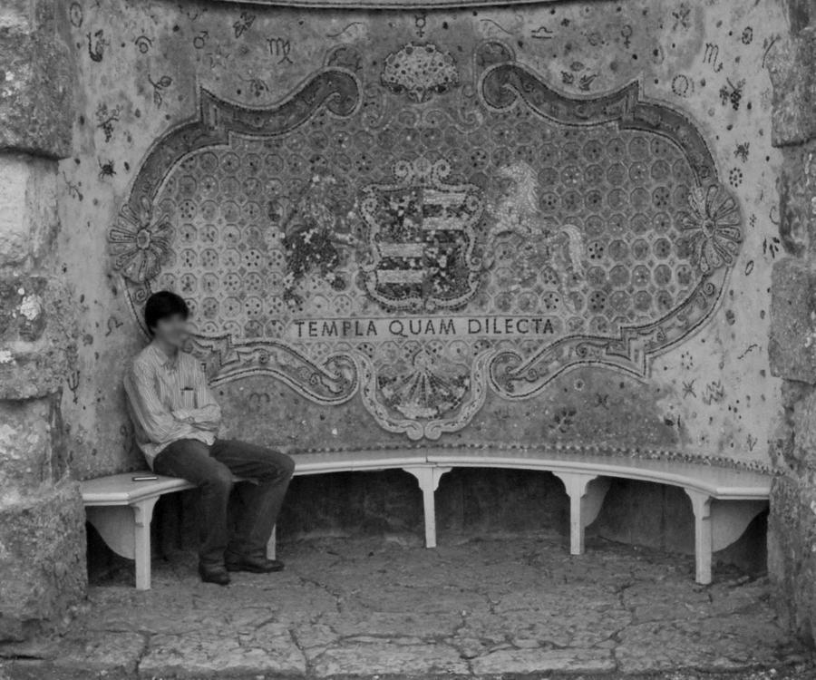 templa quam dilecta by incredibledictu