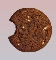 bitten cookie by incredibledictu