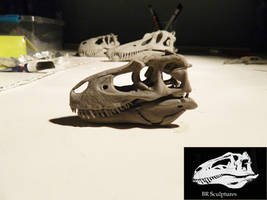 Gorgosaurus skull 1/15 scale