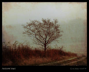 The autumn tree by Zair-Ugru-nad