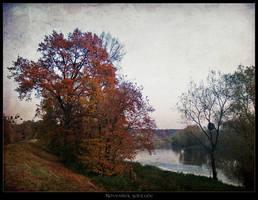 November solitude II