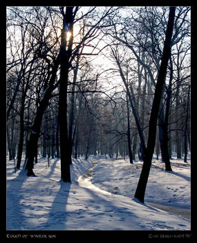 Touch of winter sun