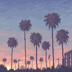 Palm trees sunset.