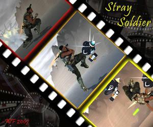 Vince: StraySoldier 2007
