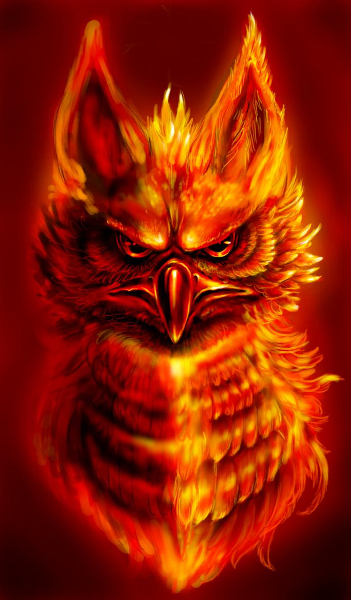 How should Phoenix look like? - Page 51   684 x 1166 jpeg 112kB