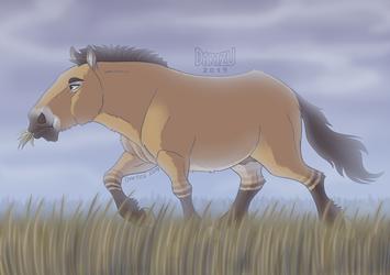 Przewalski's Horse (Redraw 2019) + Speedpaint by Dartzu