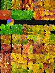 Leaves T