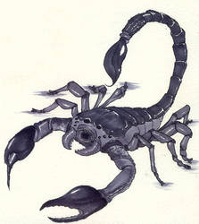 Monster Manual - Giant Scorpion by ItusaKotetsu