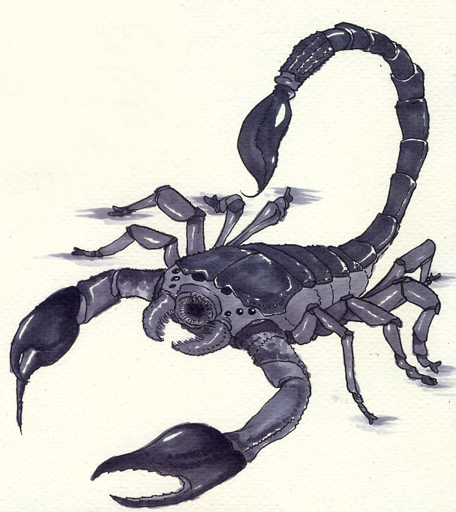 Giant Scorpion By ItusaKotetsu On DeviantArt