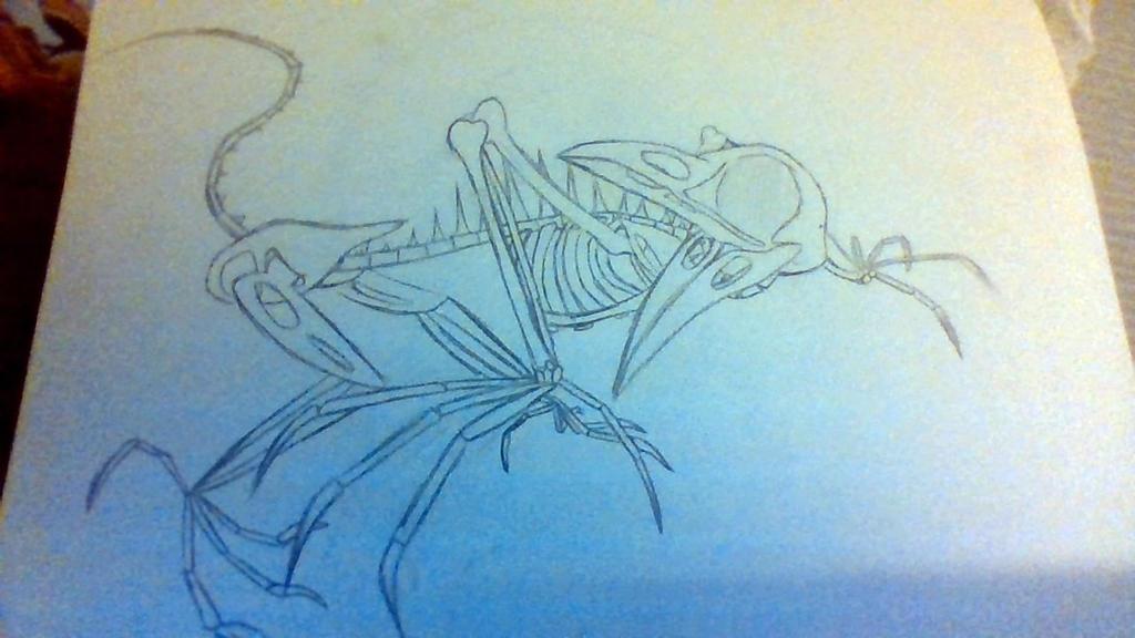 Bird Monster Skeleton by phythonking