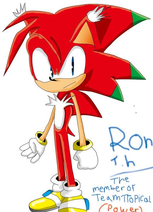 ron_the_hedgehog_by_sonikhedhog-d4jgdjm.