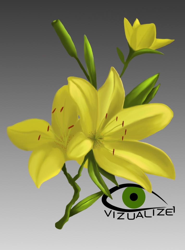 Flower by VizualiZe1