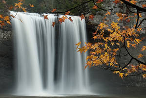 Cane Creek autumn by theon07