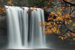 Cane Creek autumn