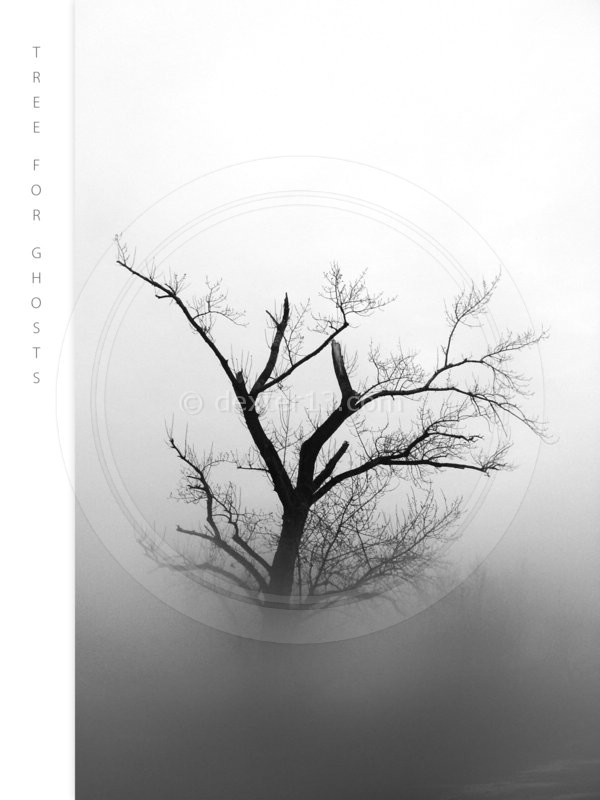 Tree for Ghosts by dexter13-sk