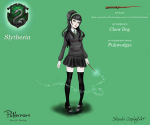 Shizuka/Slytherin by ShizukaCosplayeArt