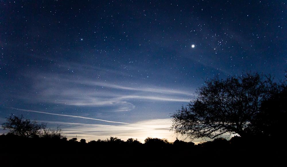 Starry Night, Near Tucson, AZ by mofig