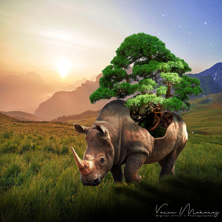 Rhino by vmaharaj