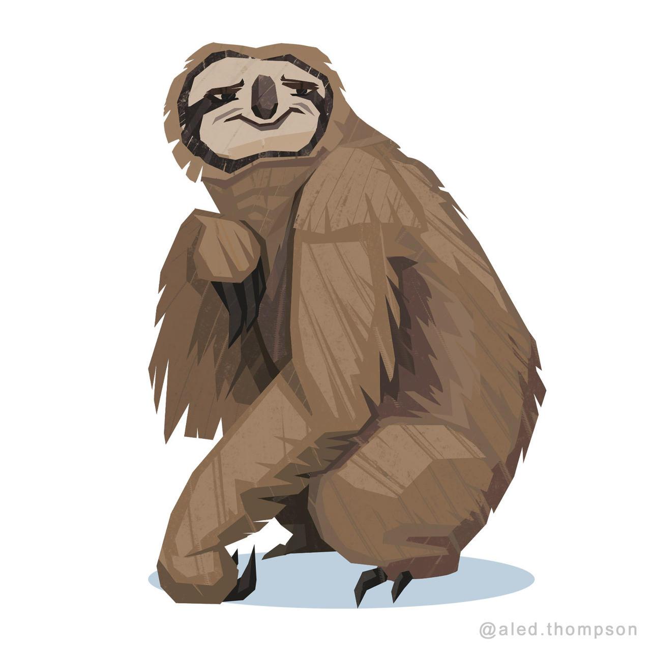 Sassy Sloth