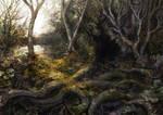Forest Pathways