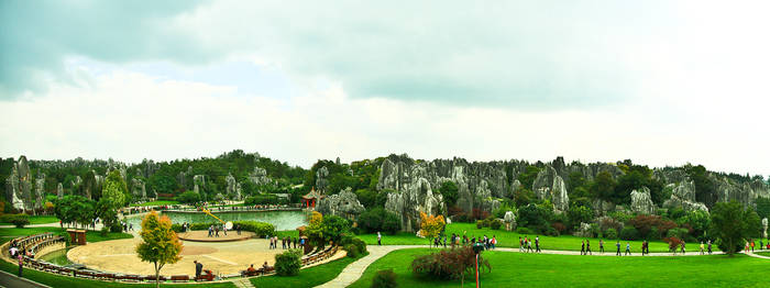 a place called stone forest in China