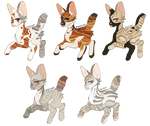 Warrior Cat Adopts 6 open. 5/5 by Divinity-Adopts