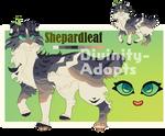 Cat Adopt /w art .OPEN