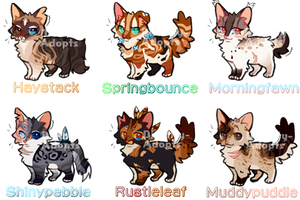 Warrior Cat Adopts 57 .closed