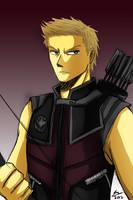 The Avengers - Hawkeye by kiku-maru