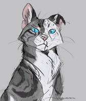 Ivypool by Wyveram