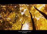 Autumn look above vol.2