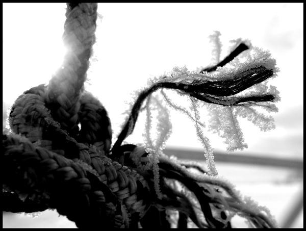 Frozen roap by niwaj