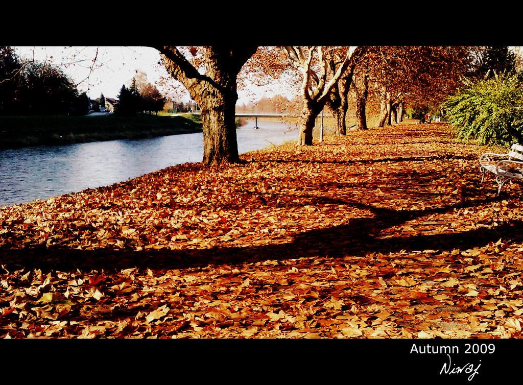 Another path by niwaj