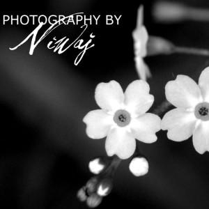 niwaj's Profile Picture