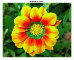 Summer colors by yekini