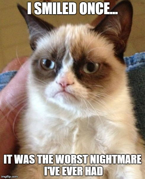 Grumpy Cat meme by Boyscoutwizard