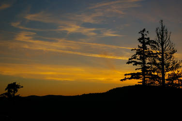Interurban Sunset