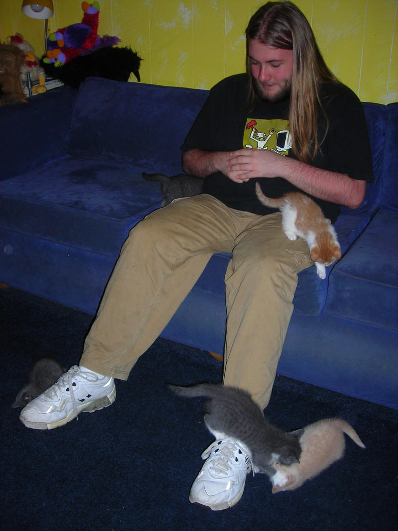 I love kittens by BigJohnnyCool