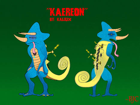 COMMISSION - Kaereon