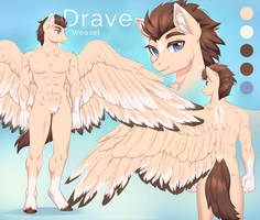 Drave anthro reference
