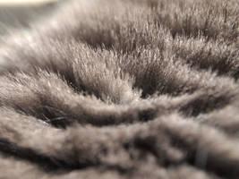 Gray Cat Fur by RosalineStock