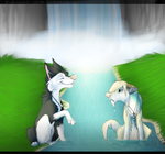 :CO: -splashes-