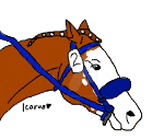 Race Horse Tag - Todd (No background) by DarkParadise24