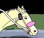 Race Horse Tag - Palomino by DarkParadise24
