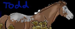 Todd sig by DarkParadise24