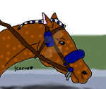 Race Horse Tag  Celtic by DarkParadise24