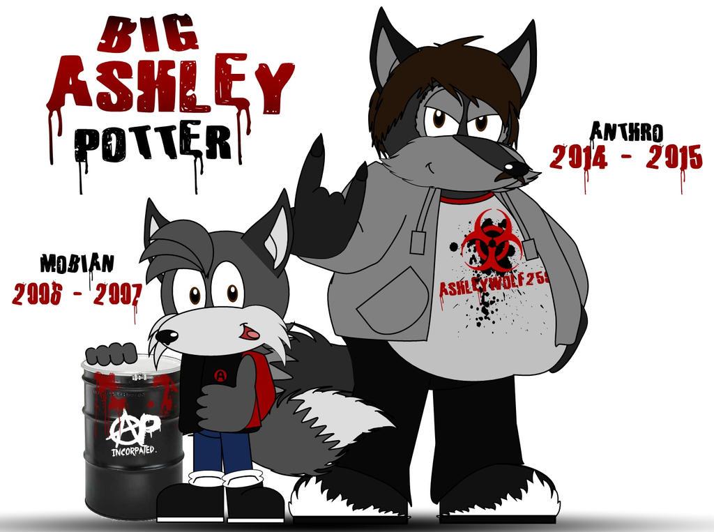 Ashley Potter by AshleyWolf259
