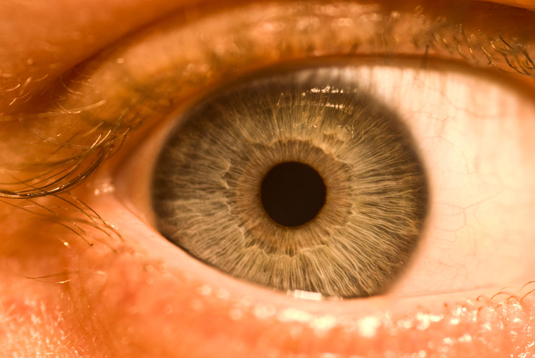 Eye by Quinnphotostock