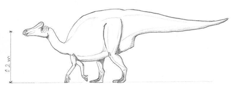 Nipponosaurus_by_DiNoDrAwEr.jpg